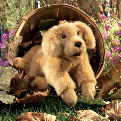 Hund, Kuscheltier, Handpuppe, Labrador, Spielzeuge
